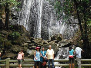 San Juan Rainforest puerto rico