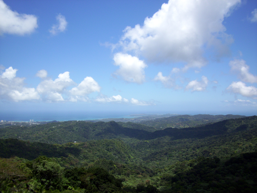 Yokahu Observation tower puerto Rico
