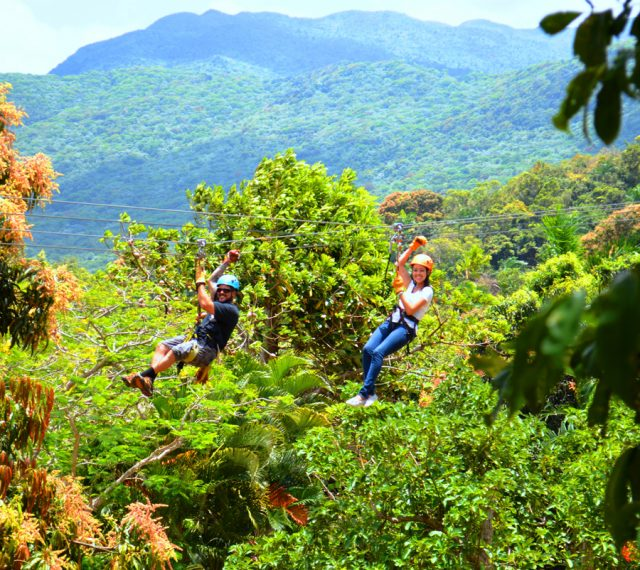 canopy zip line excursion san juan