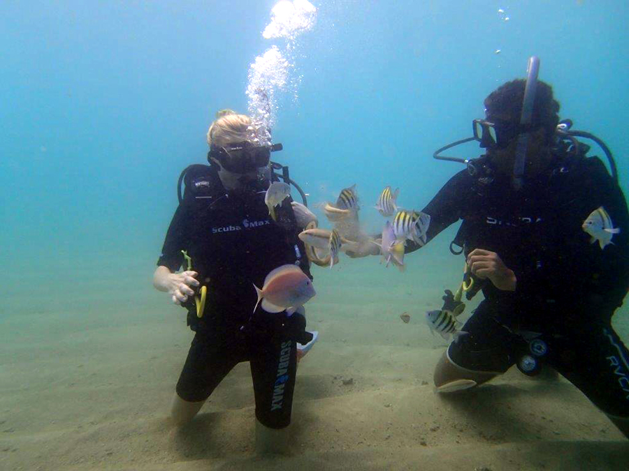 san juan discover scuba excursion